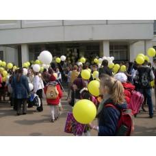 Раздача шаров в школе