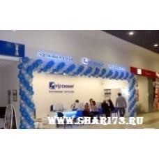 Открытие магазина (пример №11)